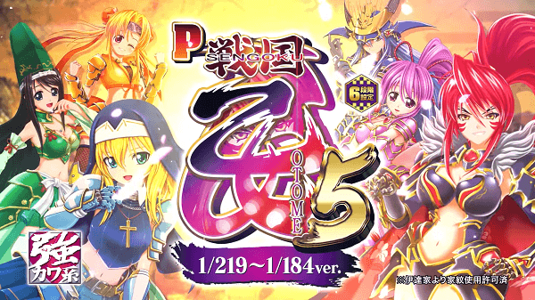 P戦国乙女5 ライト トップ
